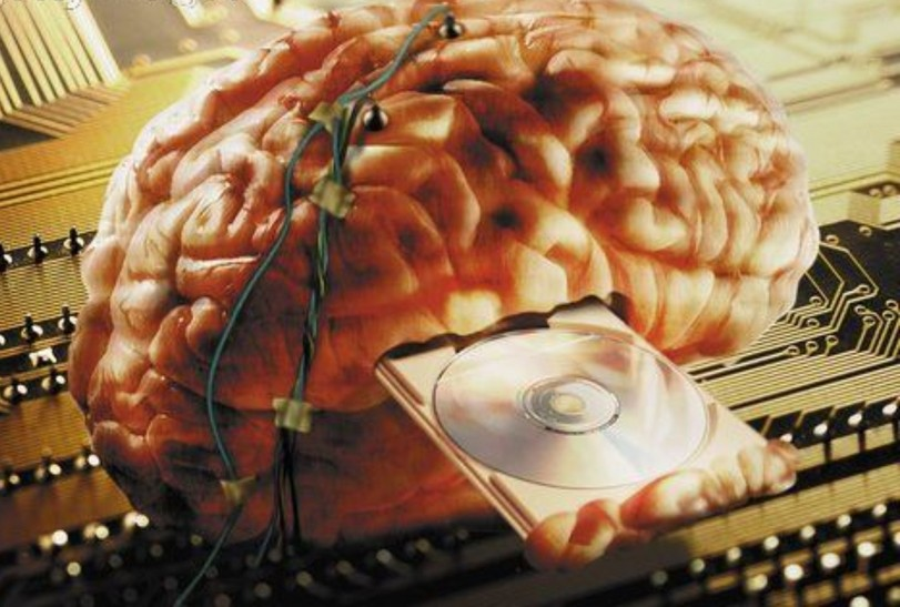 Программирование мозга
