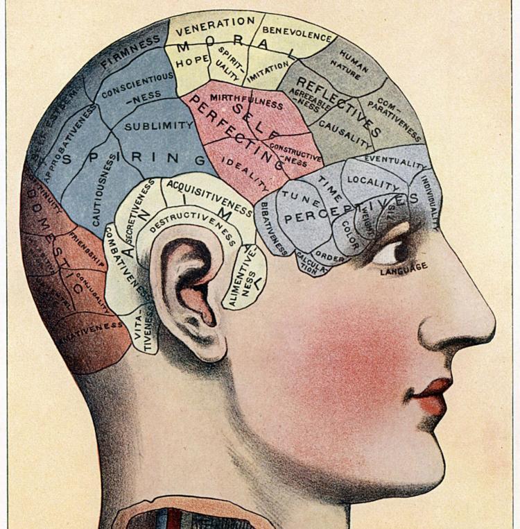 Карта памяти человека